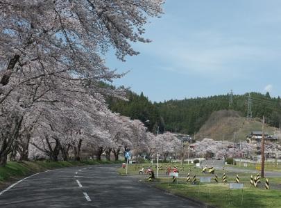 石川自動車教習所|自然溢れる環境の中での教習